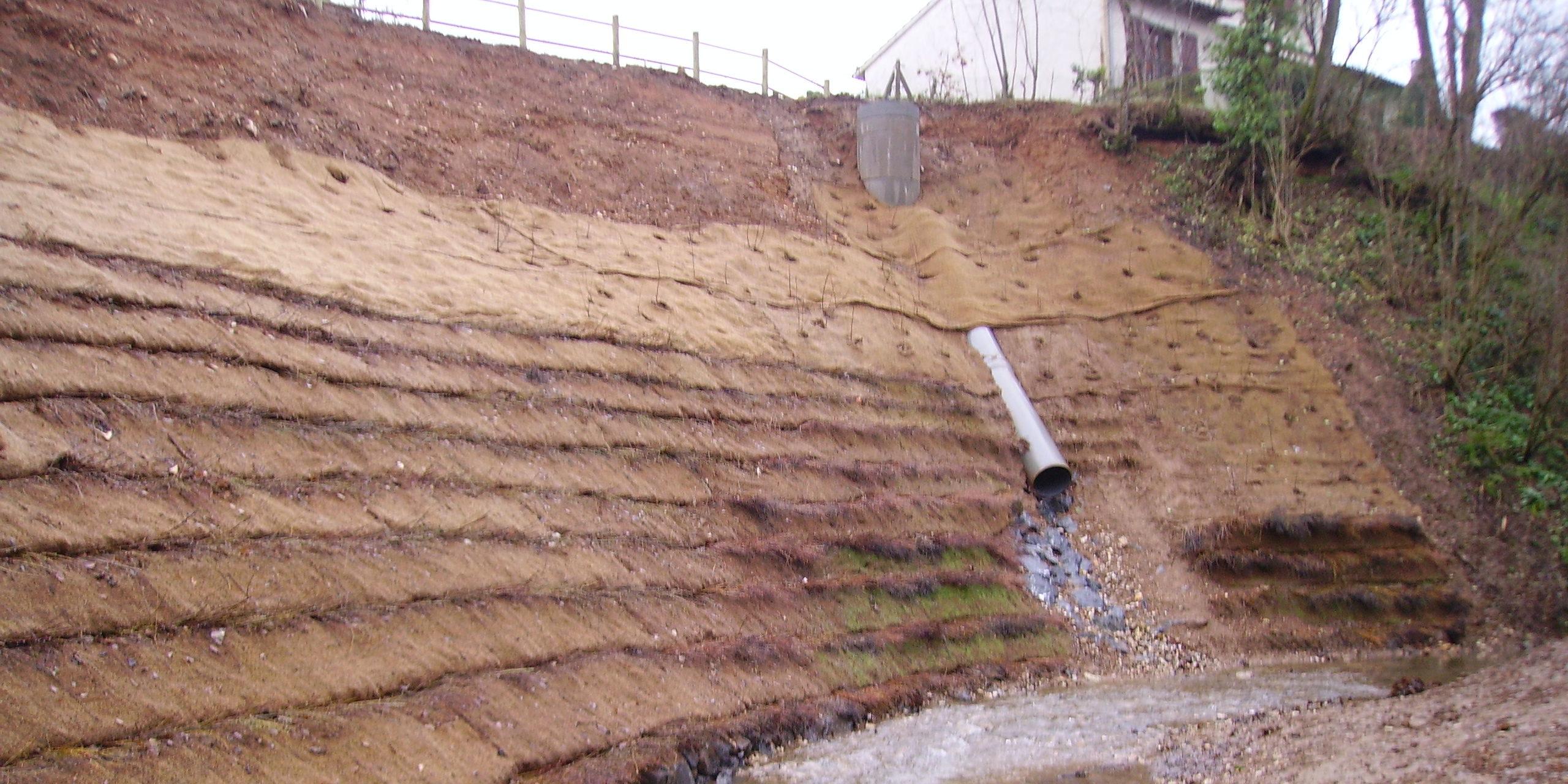 Lit de plants et plançons - Protection de berges - CHOGNOT